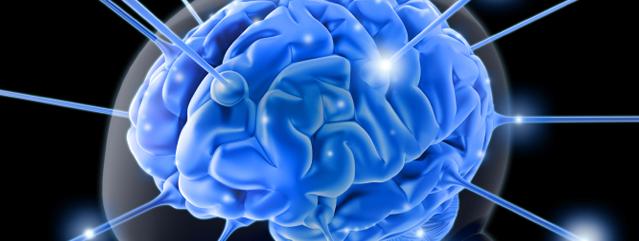 rewired_brain